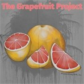 Grapefruit Project Icon