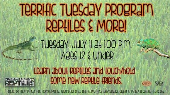 Reptiles & More!