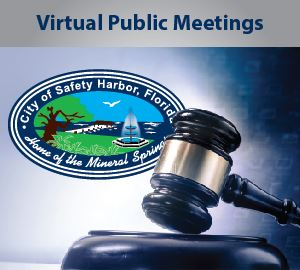 Virtual Public Meeting Instructions on how to listen and participate