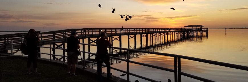 photographers in  silhouette taking pictures of the Safety Harbor Pier at sunrise